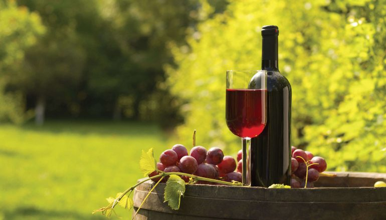 Shady Creek Winery Expands Footprint