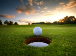 Proposed Golf Center Could be Major Draw