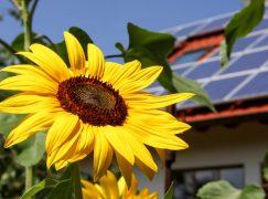 Multi-Million Dollar Kokomo Solar Project Now Online
