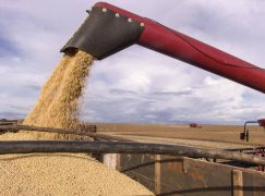 Grain Transport Company Announces $31M Expansion at Port
