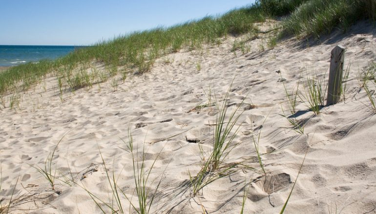 NWI Beaches Reopen, U.S. Steel Plant Resumes Operations