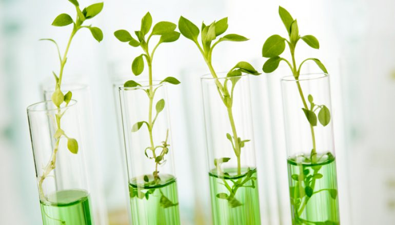 Life Science Industry Continues to Rise