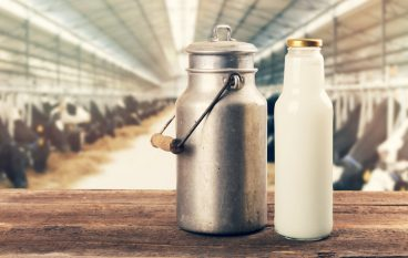 Walmart Opens New Milk Processing Plant, Creates 300+ Jobs
