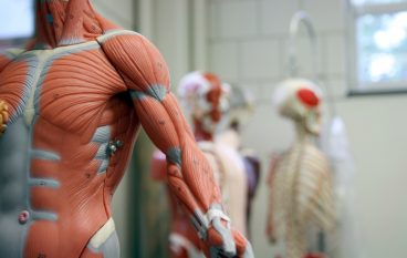 Orthopedic Device Company Adding 111 Jobs